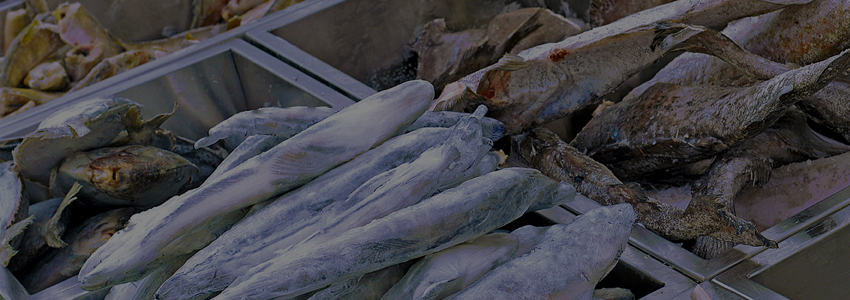 Продавец дешевой рыбы временно недоступен