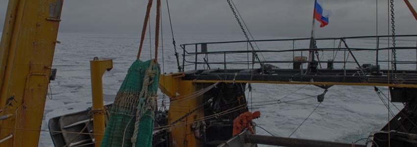 Контрольно-надзорная деятельность в области рыболовства будет автоматизироваться