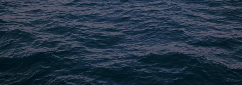 Сведения об изготовлении острог для ловли рыбы запретили распространять через Интернет