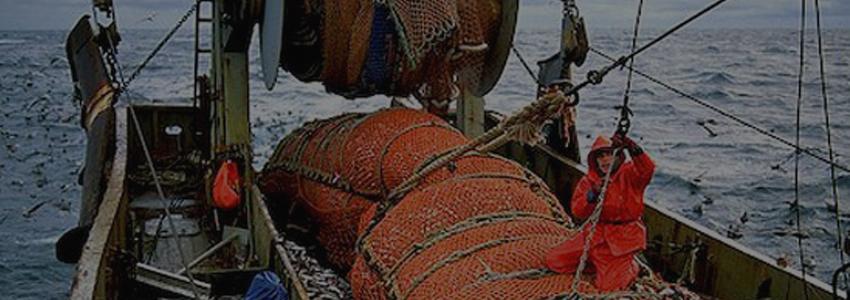Россия и Евросоюз намерены развивать сотрудничество в области рыболовства