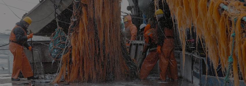 В поправках в Налоговый кодекс предлагается предусмотреть льготы для рыбаков