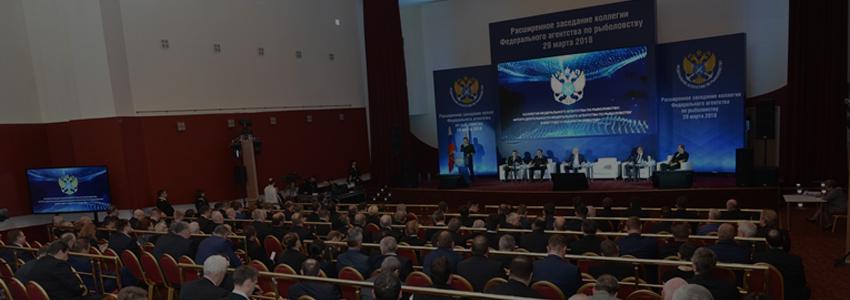 Руководитель Росрыболовства Илья Шестаков озвучил задачи на 2018 год