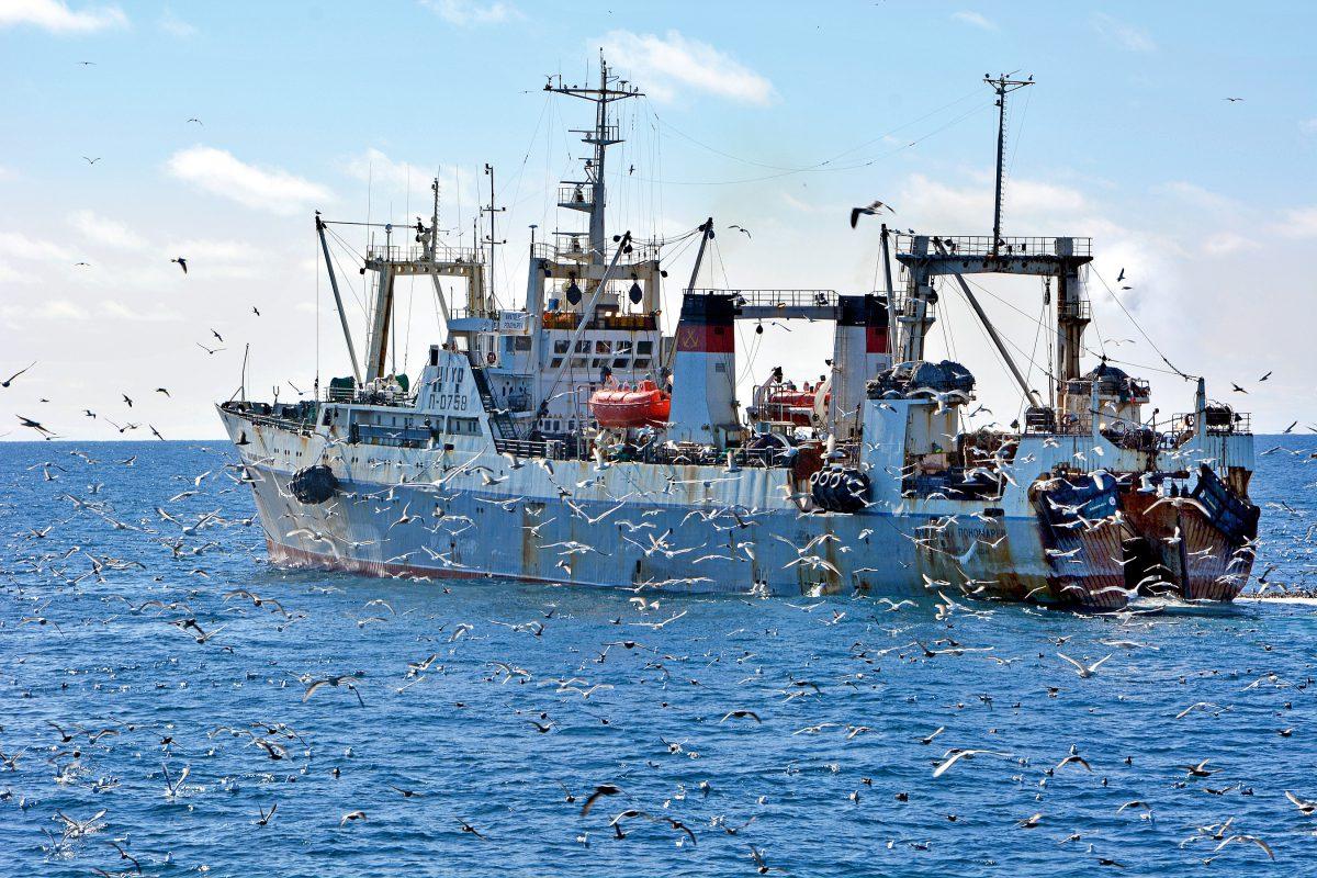 фотографии промысловых судов в море против научиться чему-то